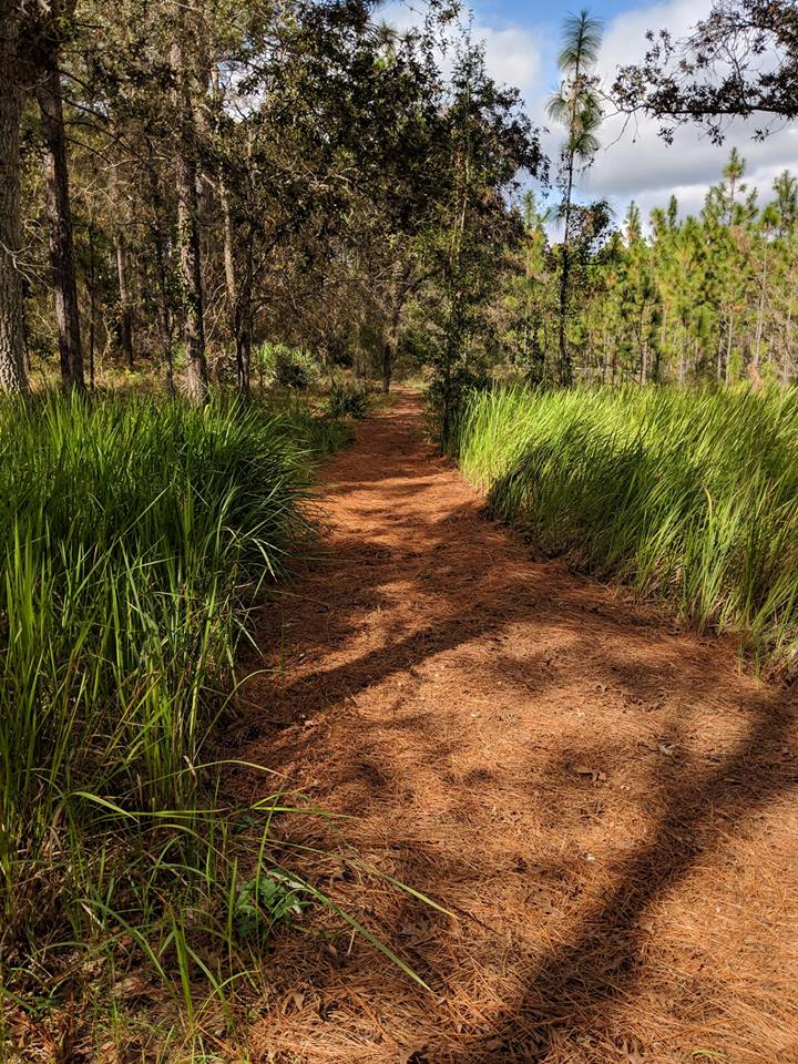 Outdoors at Unity of Citrus | Unity of Citrus County